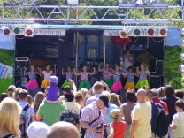 Altstadtfest Ilmenau 2010_1