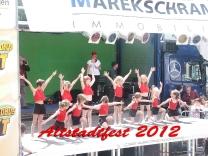 Altstadtfest Ilmenau 2012_21